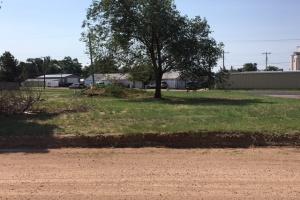 101 Dodson,Dalhart,Texas 79022,Land,Dodson,1001